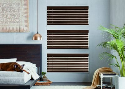 horizontal blinds on window